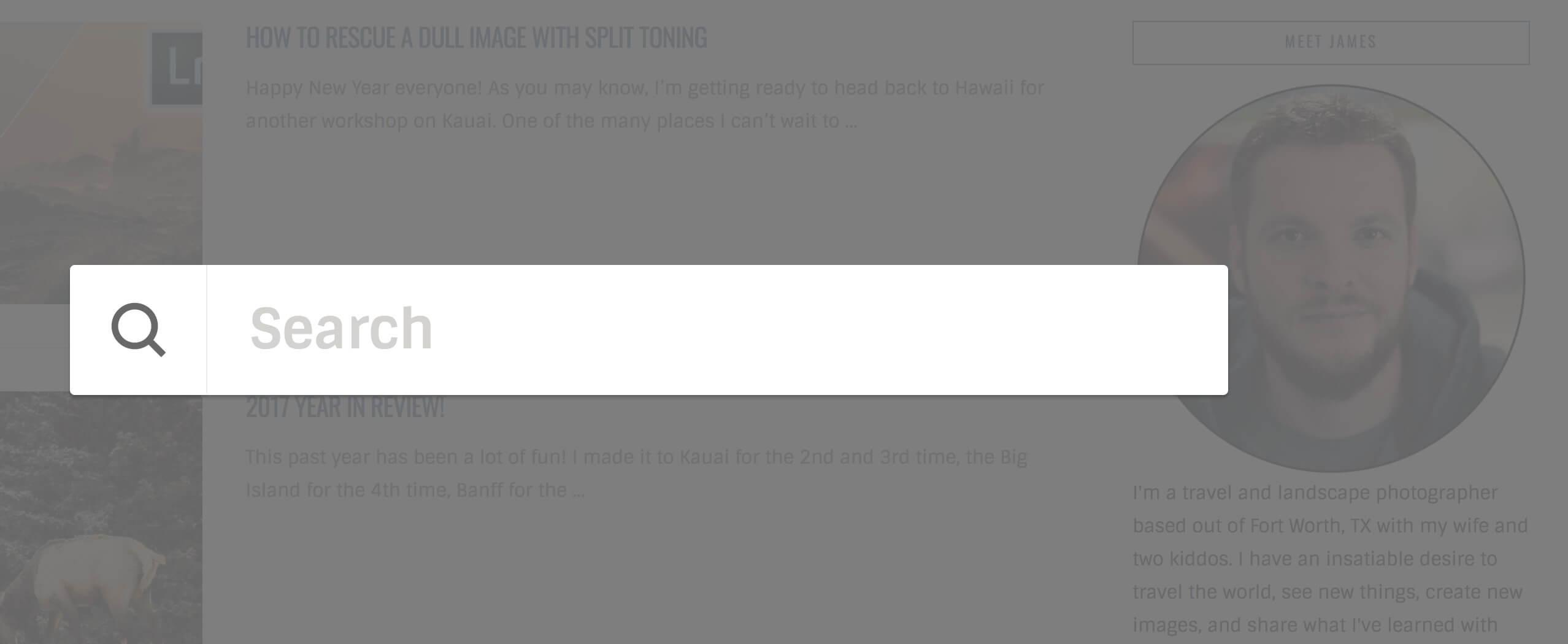 Search Bar WordPress