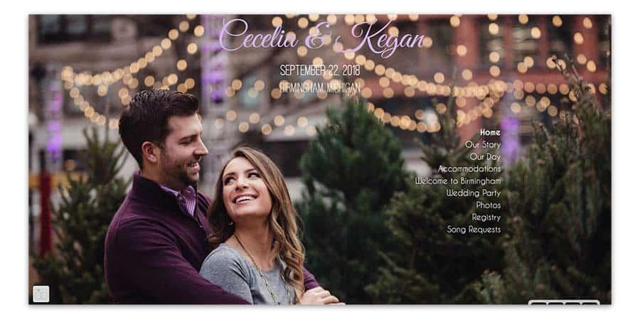 Cecelia and Kegan's wedding website as an example