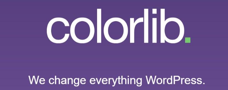 Colorlib's detailed blog about theme development